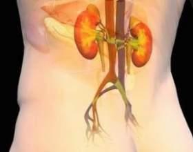Історія хвороби: хронічний гломерулонефрит - правильне харчування фото