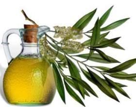 Ефірна олія чайного дерева. Властивості і методи використання фото