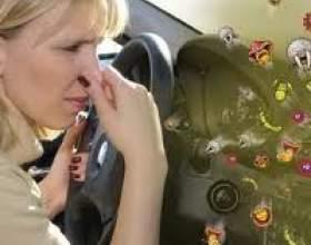 Як позбутися від запаху в машині? 5 кращих способів фото
