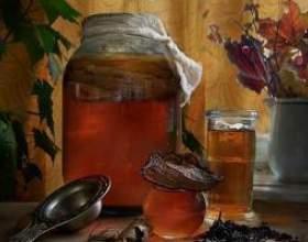 Лікування чайним грибом фото