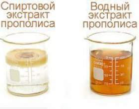 Пити і жувати прополіс можна після схвалення доктора фото