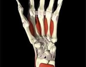 Чому болять суглоби пальців рук фото