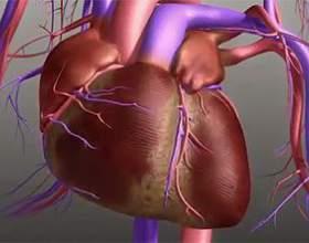 Причини болю в серці і грудної області фото