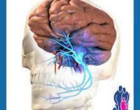 Застуда трійчастого нерва фото