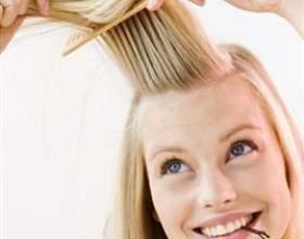 Гребінець - кращий перукар! фото