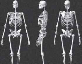 Туберкульоз кісток і суглобів фото