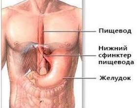 Варикозна хвороба вен стравоходу фото